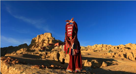 不要暑期班,我要去西藏