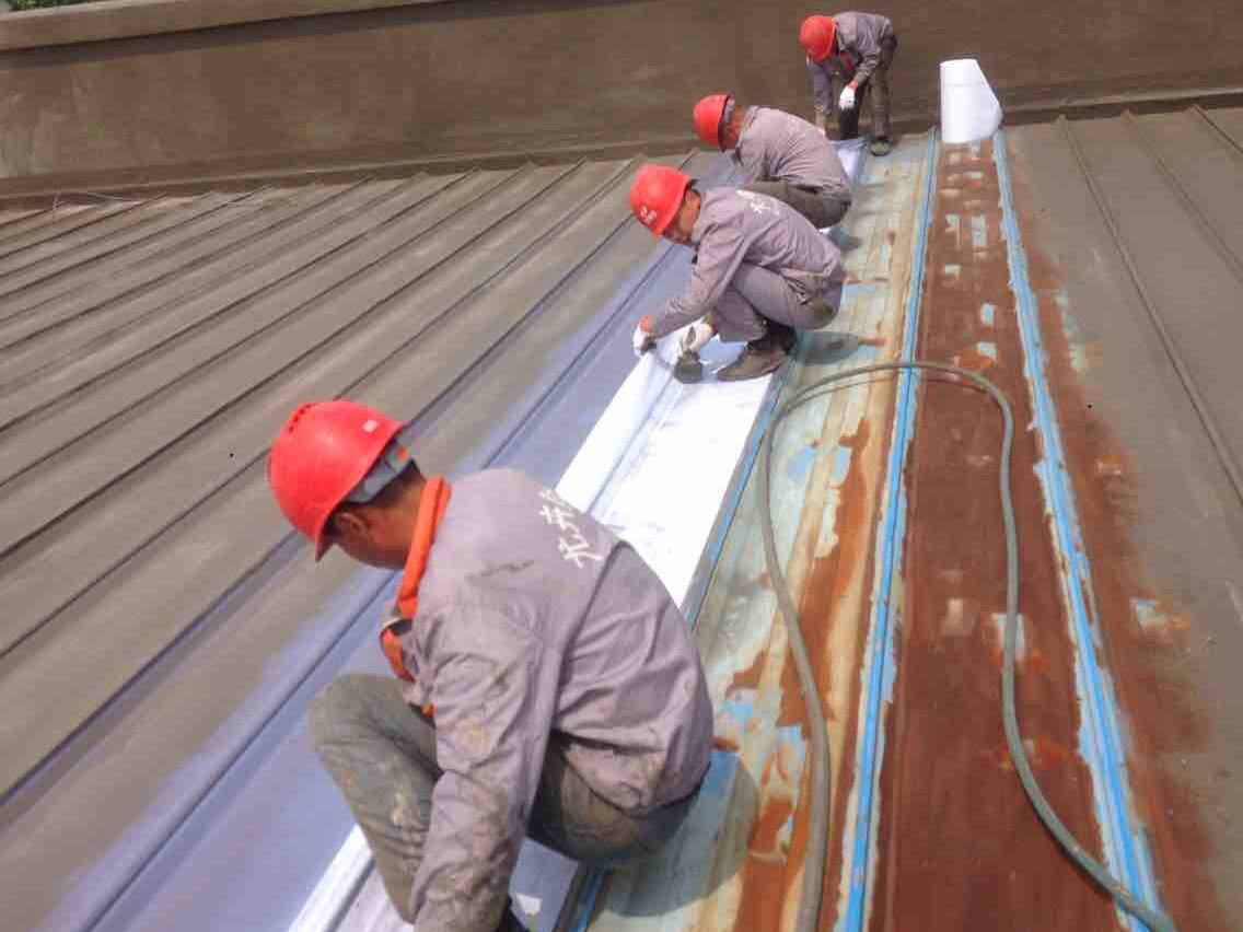 结构厂房屋面渗水部位:无论是平顶屋面还是斜坡屋面,不管是混彩钢还是
