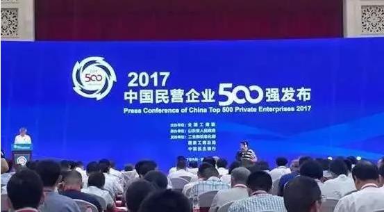 辅仁药业集团上榜2017中国民营500强